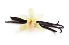 Arôme Vanille des Iles